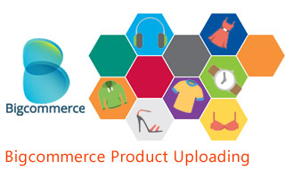 Bigcommerce Product Entry Services