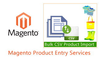 Magento Product Entry Services